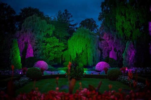 Park-nocą